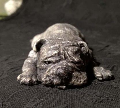 лежащая собака