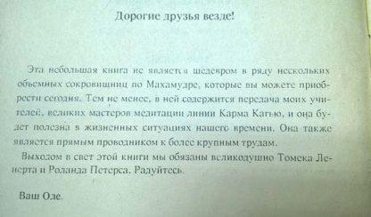 "Аннотация к книге ""Махамудра"""